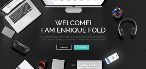 Download ENFOLD One Page WordPress Themes