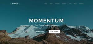 Download MOMENTUM Simple One Page WordPress Themes 2016